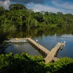 River La selva lodge - Yasuni Rainforest Lodges