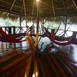 Jamu Lodge - Cuyabeno Rainforest Lodge