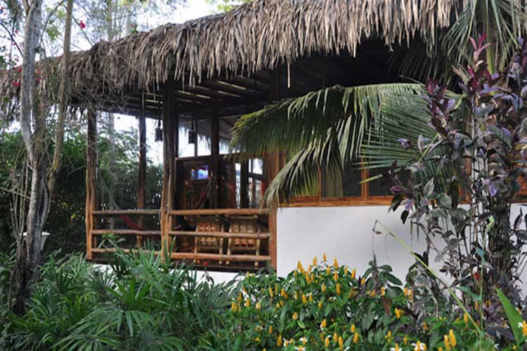 Casa del Arbol Mandala Lodge - Pacific Coast Lodges