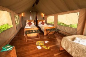 Tent Galapagos Safari Camp - Lodges Ecuador