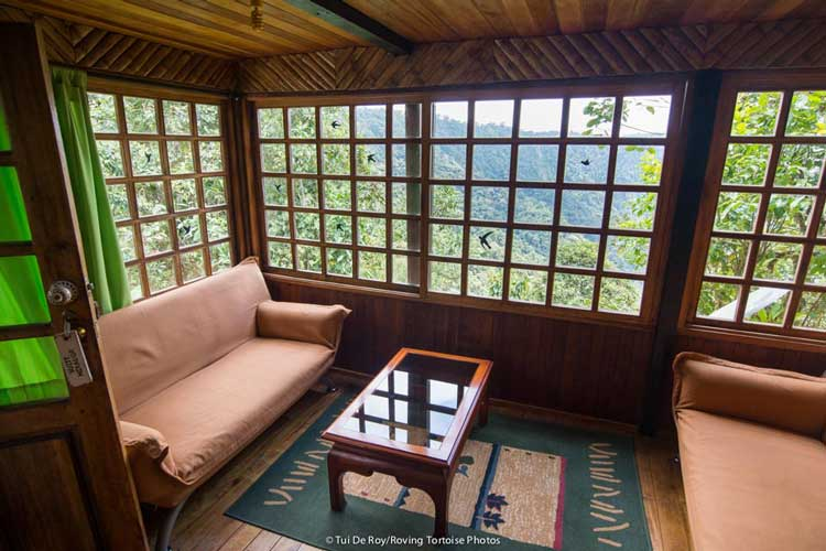View Bellavista Lodge - Cloudforest Lodges