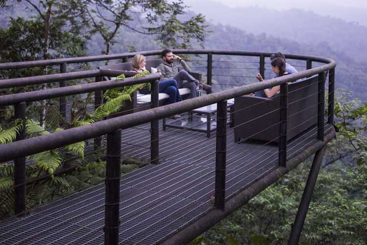 View Mashpi Lodge - Lodges Ecuador