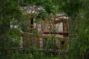 Itamandi Lodge - Upper Napo River Lodges