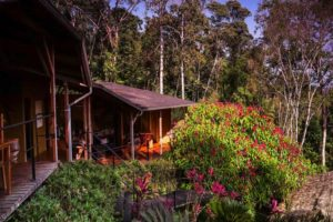 Jungle Hamadryade Lodge - Lodges Ecuador