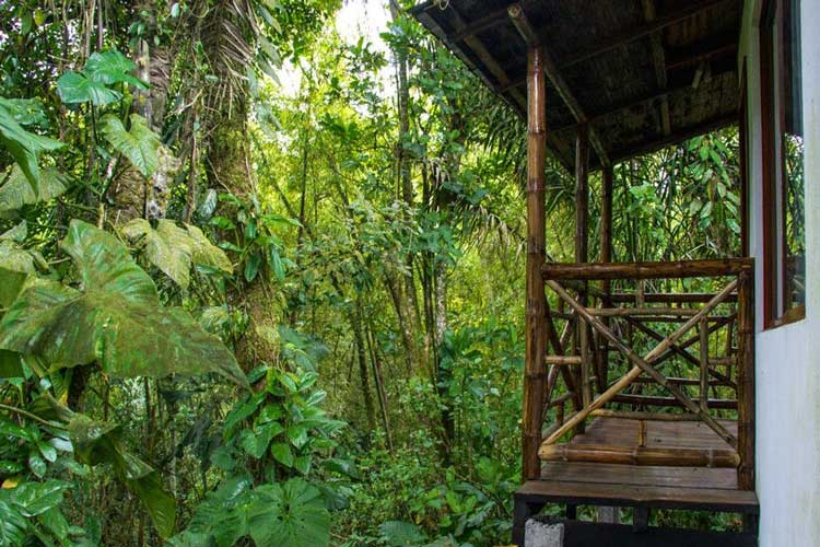 Balcony Pacoche Lodge - Lodges Ecuador